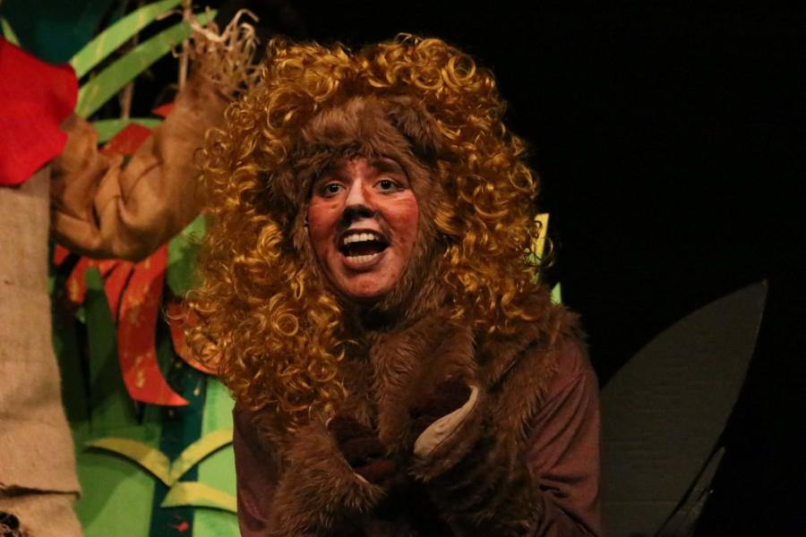 "Theatre puts on a production of ""Wizard of Oz"" for Children's Play"