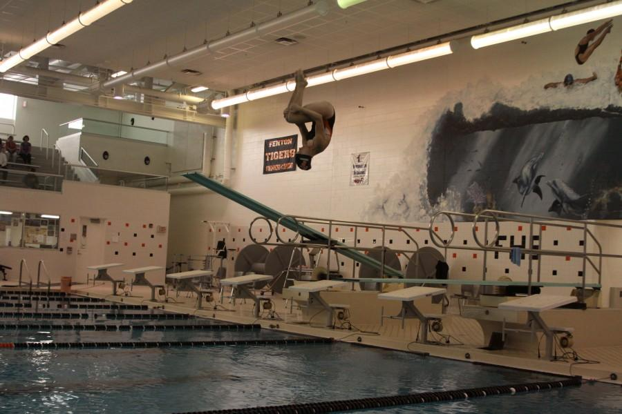 Sophomore Taylor Shegos breaks three diving records at the Flint Metro League Championships
