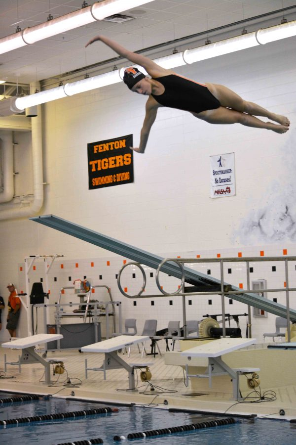 Competing on her second day back after recovering from a concussion Junior, Taylor Shegos performs a front dive with a half twist. Shegos along with her fellow teammates dived well on Tuesday evening helping Fenton with the win against Howell.