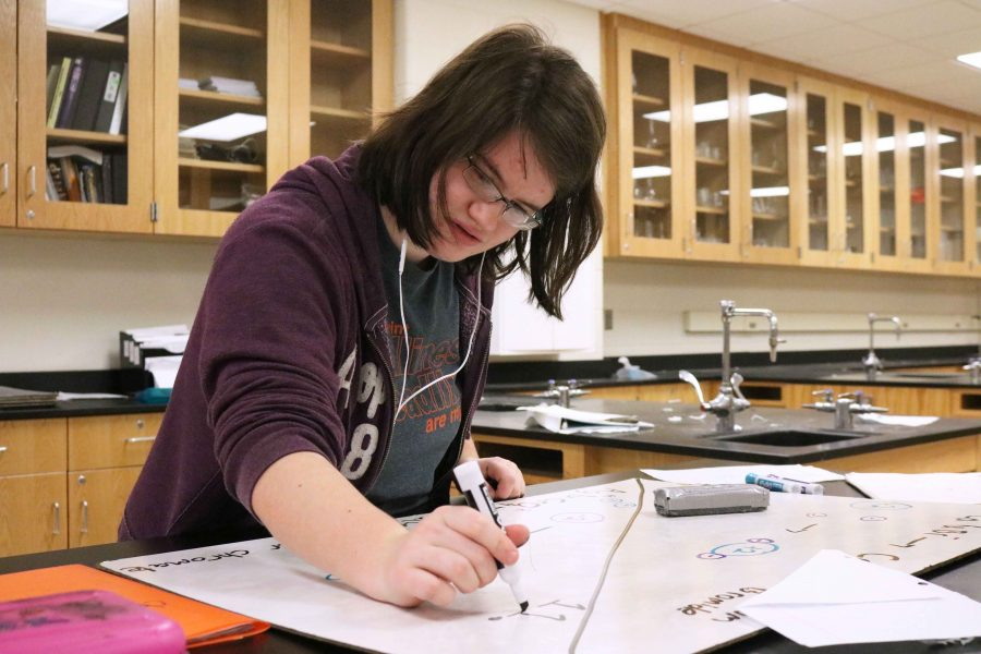 During her 4B Chemistry class, junior Laura Albrant begins to write down an ionic compound formula. Afterwards, Albrant presented her colorful board  of information to the rest of her classmates.