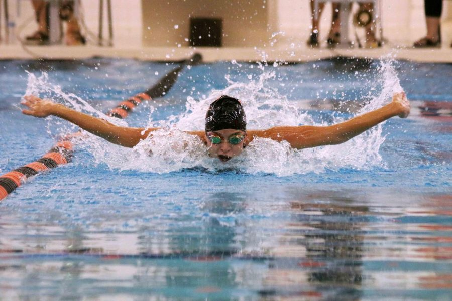 Swimming in her last county meet, senior Rachel Ritticher swims the 100 butterfly. The Fenton girls swim and dive team took second place at this years county meet.