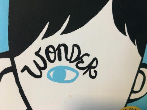 'Wonder' Movie Review