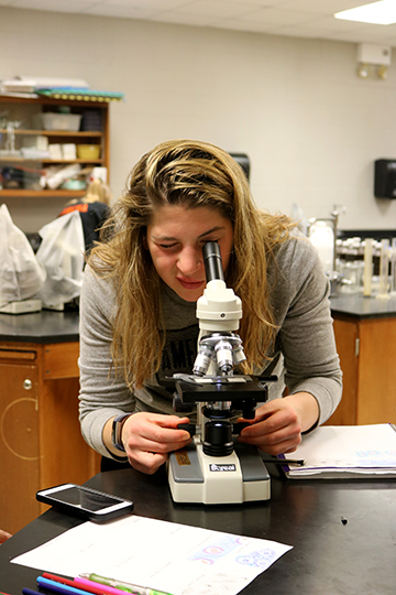 As she prepares for her anatomy quiz, senior Lauren Koscielniak looks into her microscope. The anatomy classes will have to remember what each tissue looks like under a microscope.