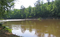 he flint water Crisis emerged when an executive decision was made to switch water sources from Lake Huron water to water from the Flint River (Pictured).