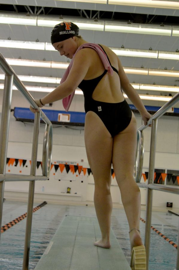 Senior diver Chloe Mallard prepares to do the reverse dive straight by adjusting the board for the fulcrum she wants. Her dive awarded the swim and dive team 35.1 points on Sept. 26 vs Corunna.