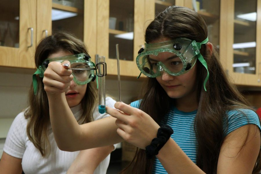 During a chemistry lab, sophomore Katie Klump observes the color change in a chemical reaction. On Sept. 20, students in Jason Kasaks class participated in multiple labs to identify what types of reactions took place.