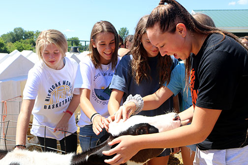 At Cook's Dairy Farm, freshmen Adrie Staib, Grace Maccaughan and Lilly Philstrom pet a calf. The freshman, JV and varsity volleyball teams went to the farm for their Got Milk grant.