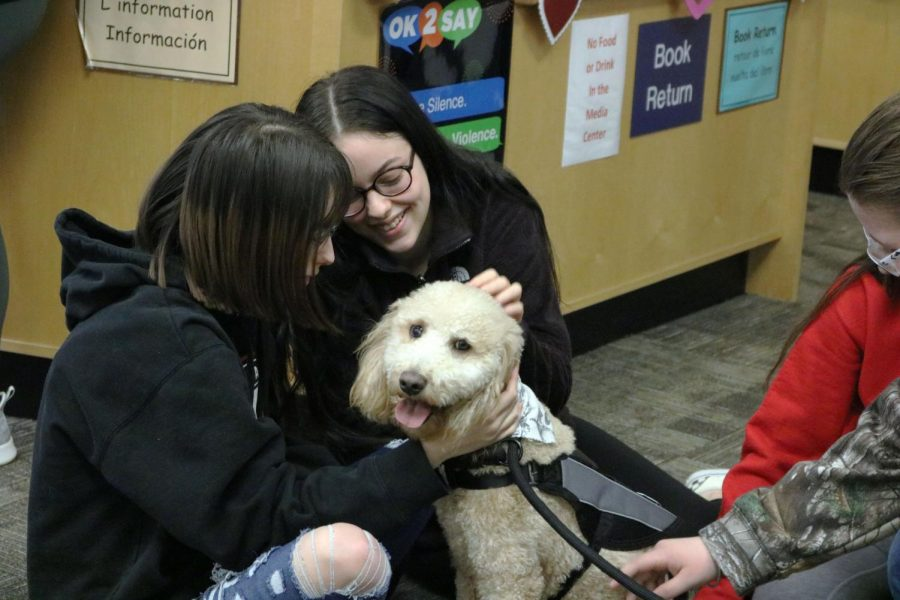 Junior Bridget Maxwell and junior Victoria Maxwell visit the Media Center to hang out with the therapy dogs, Charlie and Buddy. The dogs came to Fenton High on Feb 20.