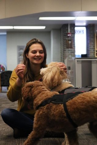 Petting Tomek-Eastern's therapy dog, Charlie, senior Erica Behnfeldt plays with the dogs. On Feb. 20, the Fenton Area Public Schools therapy dogs came to visit.