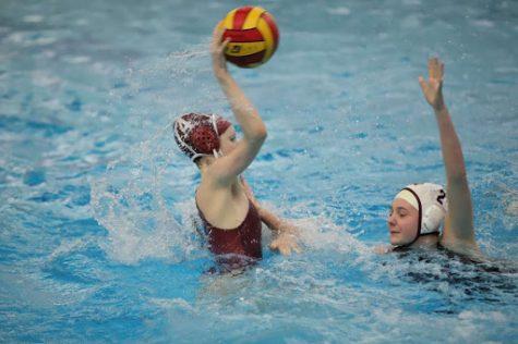 Dearborn and Dexter high schools offer alternative sports