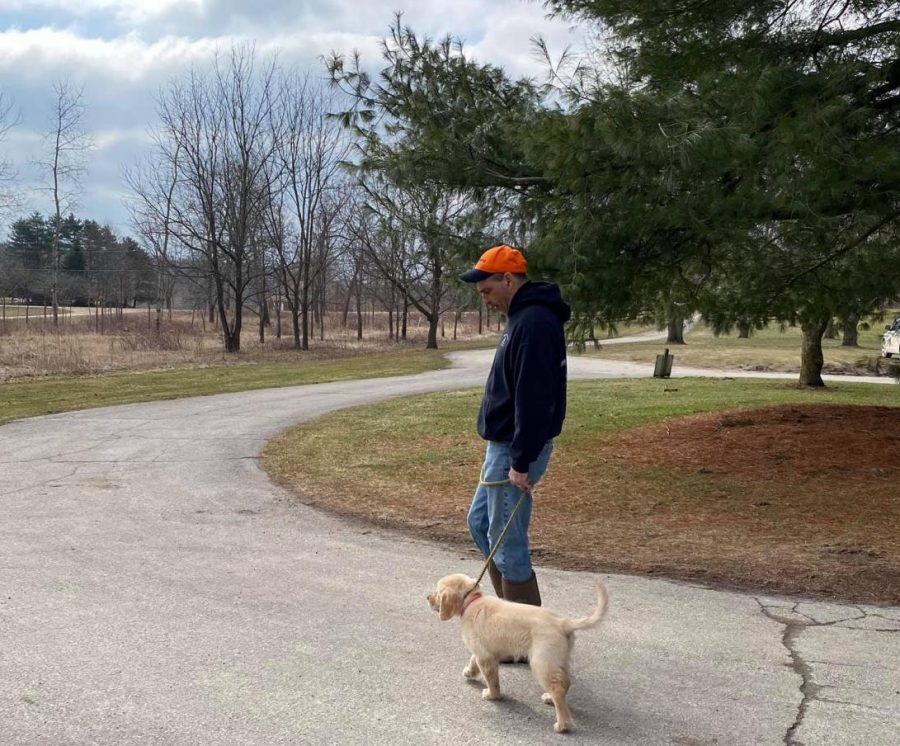 All the need-to-knows about Sunny, Fenton High's soon-to-be therapy dog
