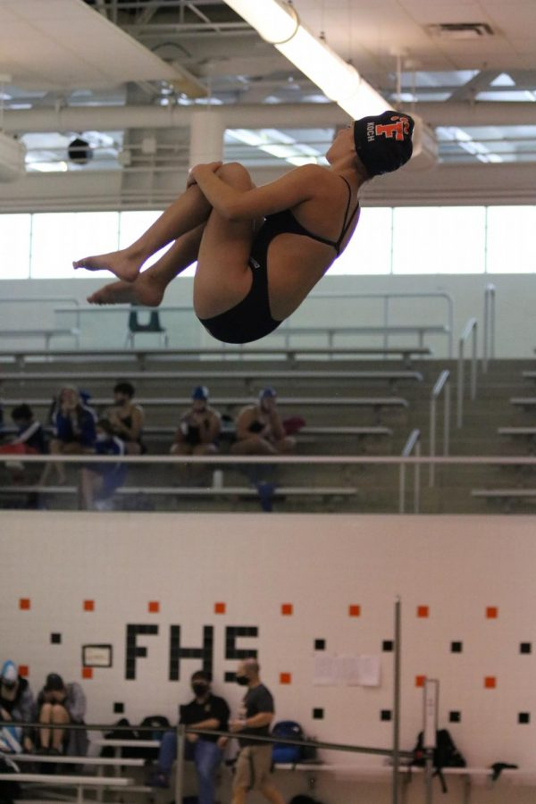 Freshman Ella Kotch practices her dive before performing. On Nov. 7 the Fenton Girls Swim and Dive Team competed at the Metro League championship meet.