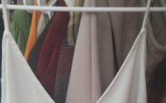 Opinion: Fenton High dress code needs improvements