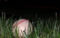 The Playbook:  Detroit baseball, from the bottom to the middle